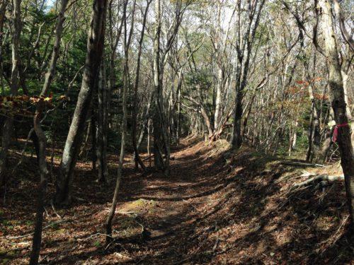 林間コース1