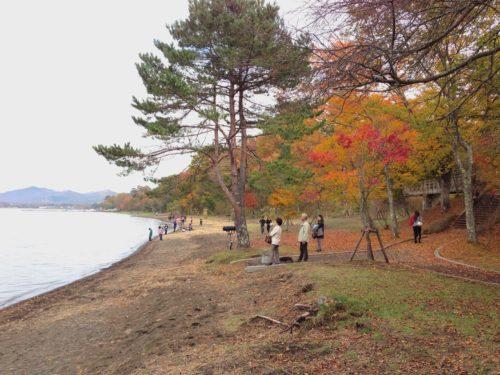 湖畔の公園