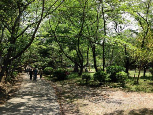 茂原公園2