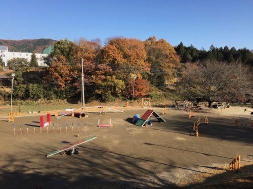 永田ドッグスクール
